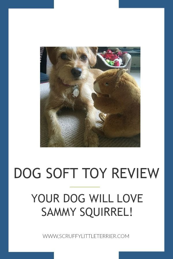 Dog Soft Toy Review Your Dog Will Love Sammy Squirrel Dog