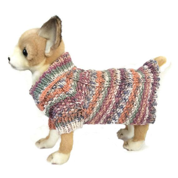 XXS dog coat small dog sweater small dog accessories T cup dog clothes  teacup dog clothing Tiny dog coat small dog jumper