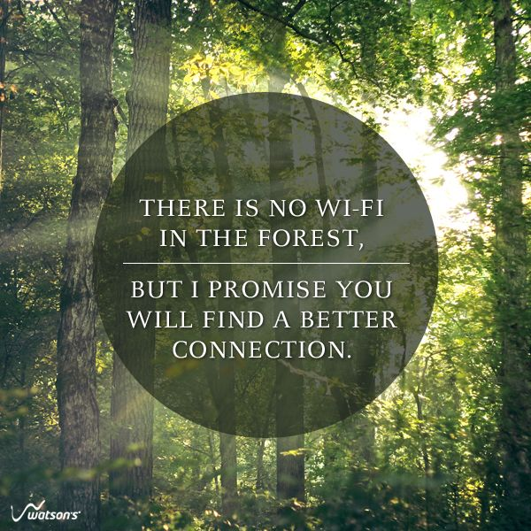 Forest Quotes: 17 Best Technology Quotes On Pinterest