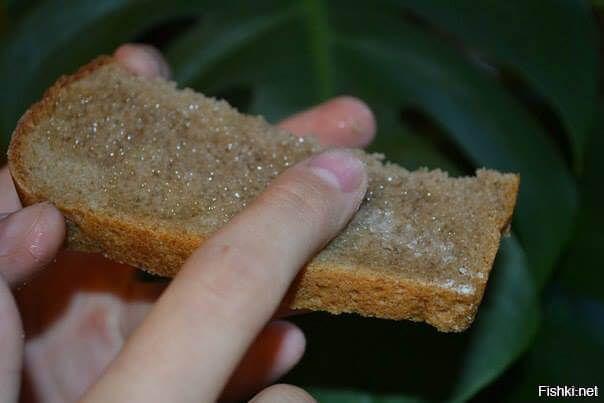 Черный хлеб с чесноком, солью и подсолнечным маслом. Мы делали так: наливали масло в чайное блюдце, брали кусок черного хлеба (предпочтительно бородинского), натирали корочку чесноком, сверху присыпали солью, а потом оставалось только макать хлеб в масло и поедать. И это непередаваемо вкусно.