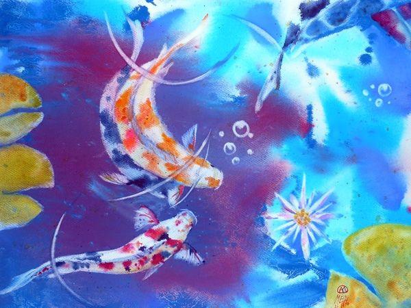 Les 20 meilleures id es de la cat gorie poissons d for Croisement carpe koi poisson rouge