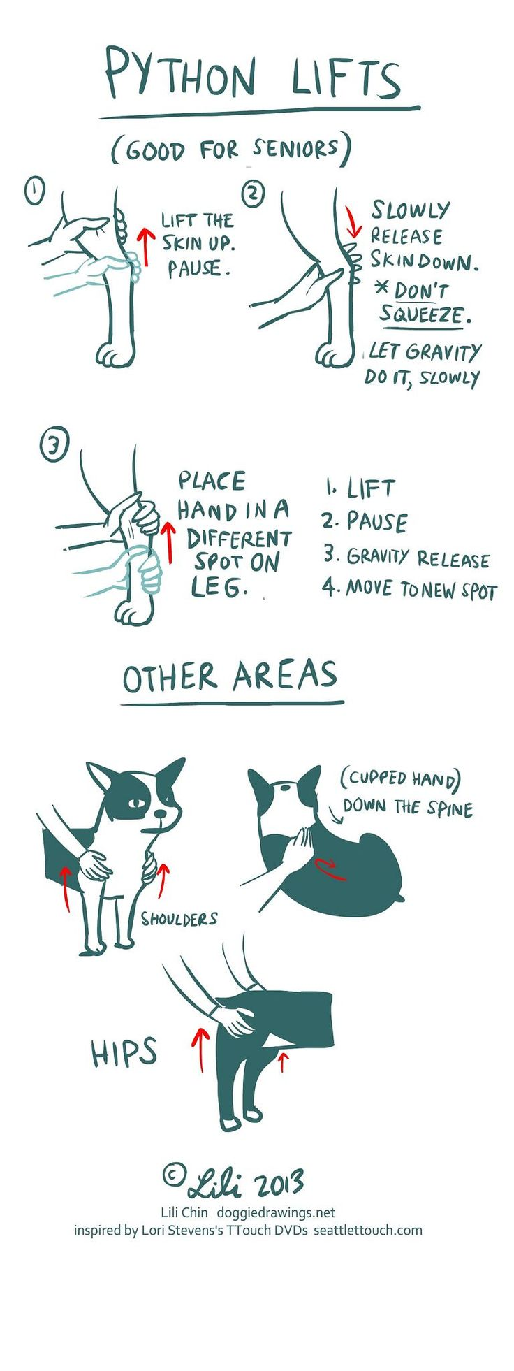 Helpful stretches. This one is especially good for senior pups.