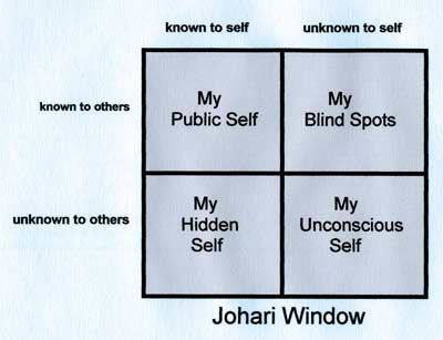 the self aware universe ebook