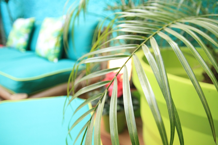 Tropical House Project by Ana Antunes - for Tv Makeover Show