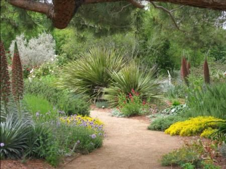 Ruth Storer Garden at UC Davis Arboretum.
