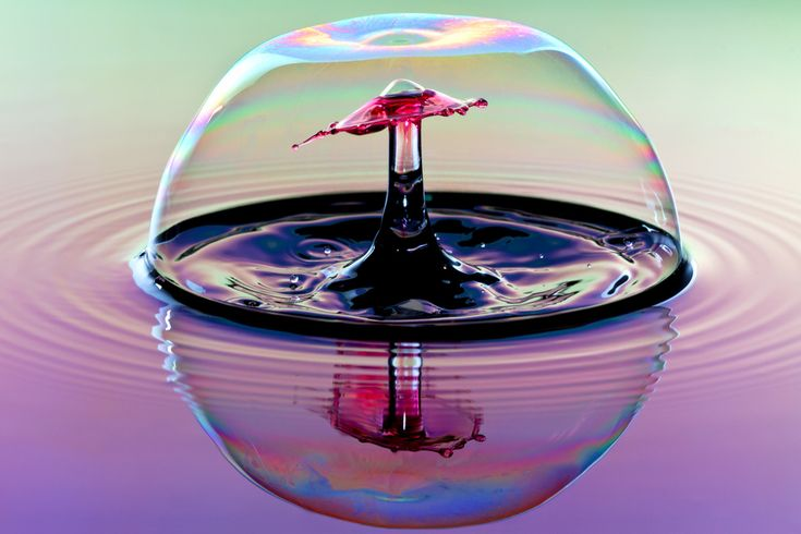 Photograph Bubble Wrapped by Corrie White on 500px