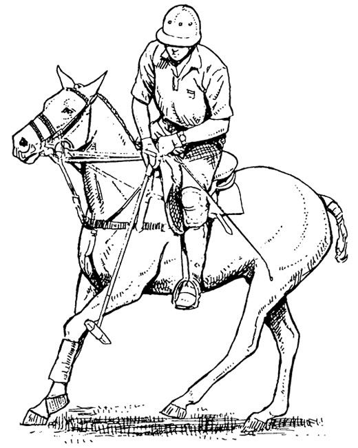 Polo Player Horse Coloring Page