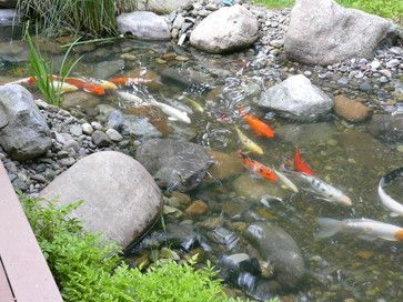Koi Pond Designs Ideas i said i always wanted a koi pond in my backyard for meditation 25 Best Ideas About Koi Pond Design On Pinterest Pond Design Koi Ponds And Koi Fish Pond