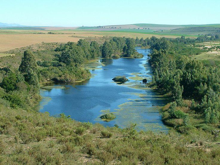 The Breede River near Swellendam, South Africa.