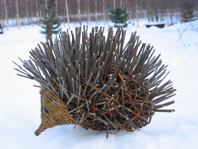 hedgehog from willow