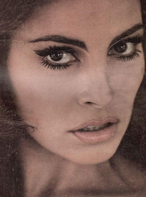 shaggy haircuts for best 25 raquel welch ideas on raquel welch 5864