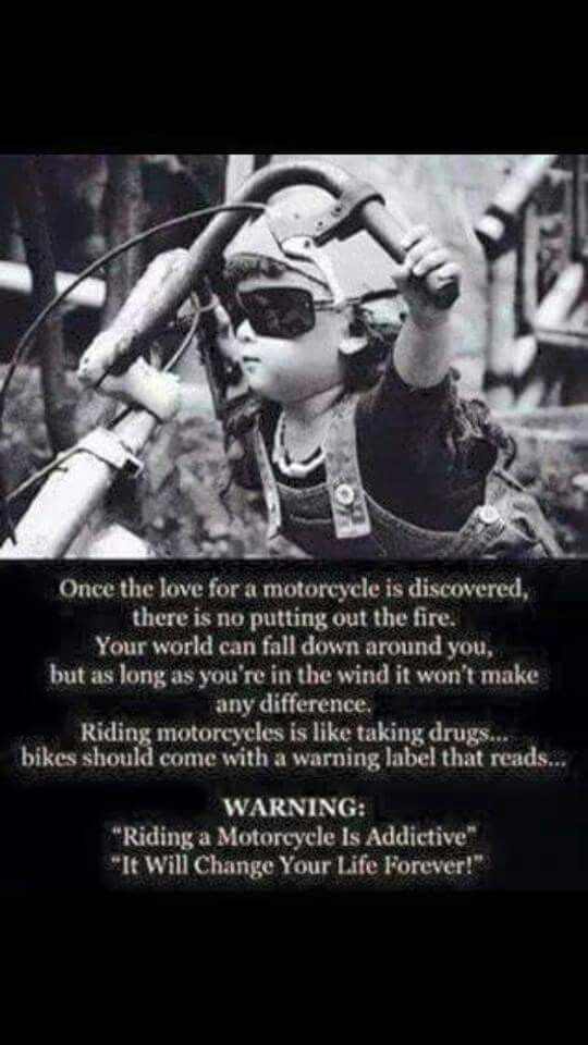 Spot on! Investing in my bike was the best thing I ever did. Nothing beats going for a night ride with nothing around the stars and the moon