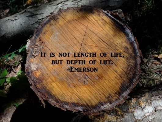 it is not length of life, but depth of life ...emerson
