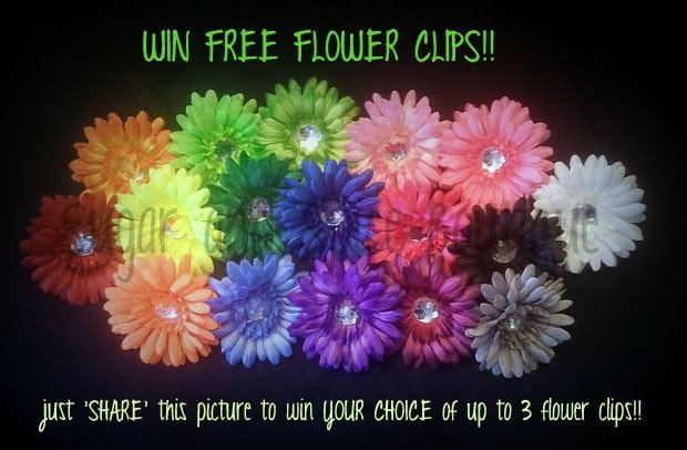 WIN FREE FLOWER CLIPS-  https://www.facebook.com/SugarSpiceBoutiqueAZ: Free Flowers, Flowers Clip
