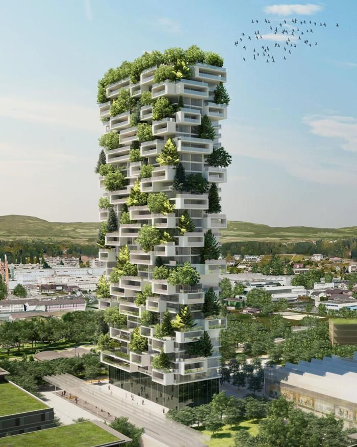 4面が常緑樹で囲まれている「垂直の森」