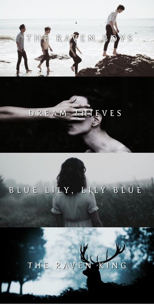The Raven Cycle | The Raven Boys | Dream Thieves | Blue Lily, Lily Blue | The Raven King | Maggie Stiefvater