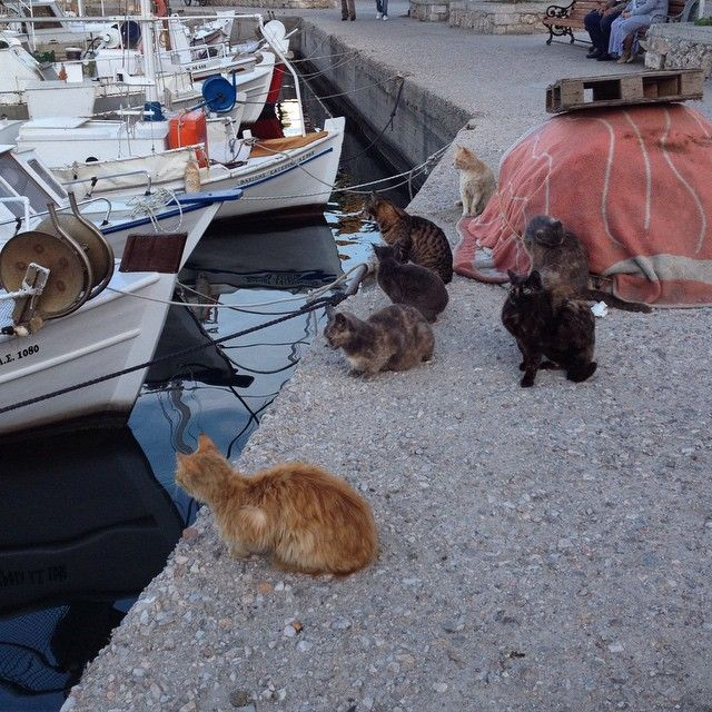 supper time #Spetses