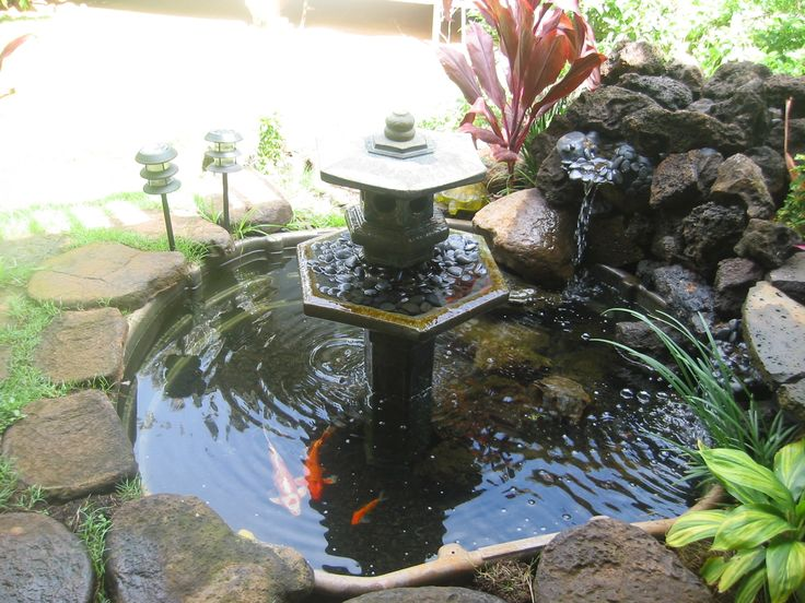 90 best small koi ponds images on pinterest backyard for Koi pond builders near me