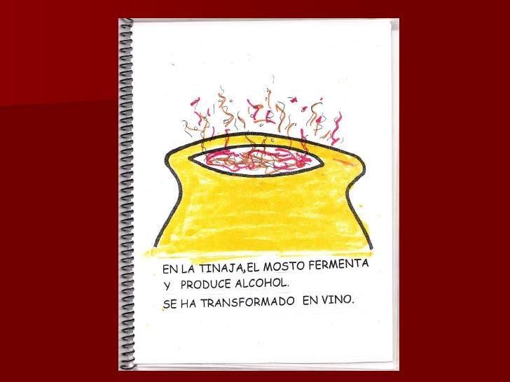 Elaboración del vino. Proceso fermentación