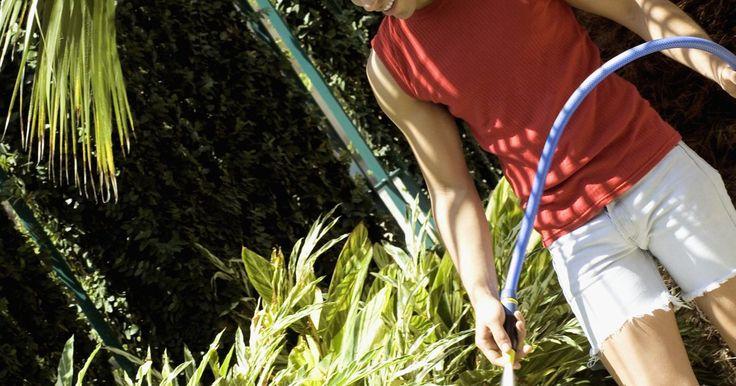 Cómo perforar tu propio pozo usando PVC. Las sequías, las restricciones y el alto costo del agua pueden ser devastadores para los propietarios y jardineros que necesitan un buen suministro de agua para regar sus céspedes y jardines. El costo de tener un pozo perforado profesionalmente también puede ser prohibitivo. Un pozo en el patio trasero puede mitigar algunos de estos problemas de ...