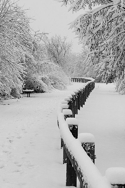 Best 25 Snow Fence Ideas On Pinterest Pattern Photography Chicken Fence And Chicken Pen
