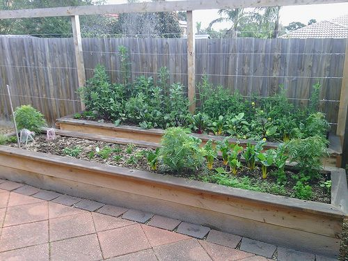 Building Wicking Beds in Melbourne | Wicking beds, Edible ...