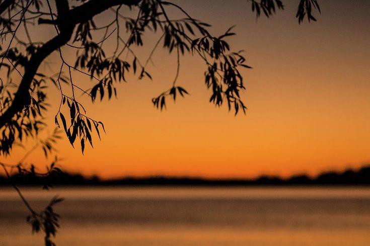 Olga Olay Photograph - Sunset Colors by Olga Olay #OlgaOlayFineArtPhotography #ArtForHome #FineArtPrints #Fall #Homedecor