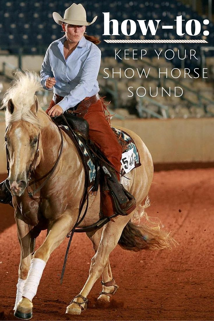 How-To: Keep your show horse sound with these tips on horse health.