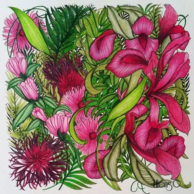For a challenge on FB I had to color all the flowers with one and the same colored pencil and a black and white pencil! I used the Magenta from Prismacolor. I loved to do this one! #floribunda #leiladuly #arttherapy #colorindolivrostop #coloring_masterpieces #divasdasartes #nossa_vida_colorida #coloringmasterpiece#desenhoscolorir #coloring_secrets #coloringsecrets #artecomoterapia #fabercastellpolychromos #prismacolor #fabercastell #posca #carandache #supracolors #ellens…