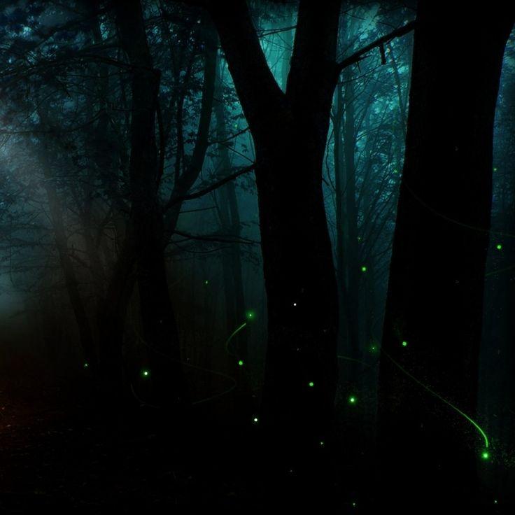 My Lightbox: ethelhallow