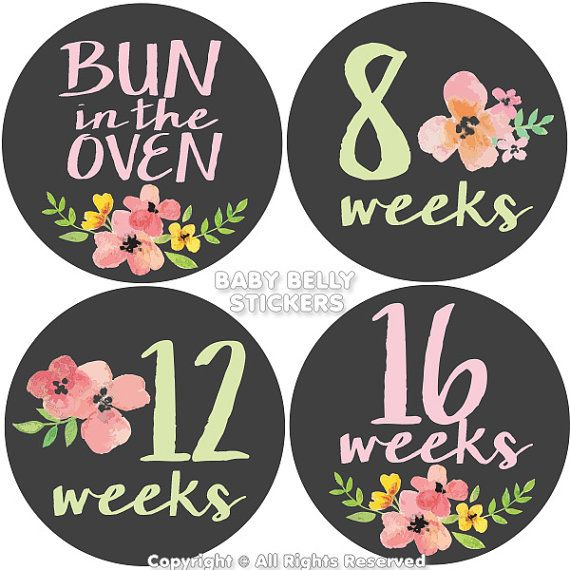 Pregnancy Stickers Maternity Stickers Week Bump Stickers by BabyBellyStickers