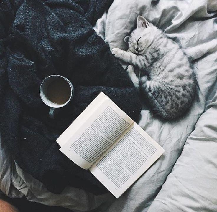 Pinterest || FOLLOW ~ Maele Green