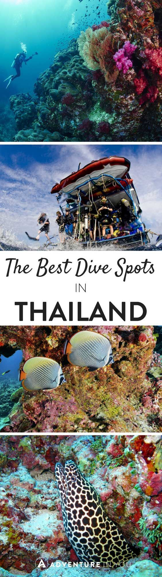 Planning to go scuba diving while traveling through Thailand? Here are recommendations for the MUST DIVE spots in the area.