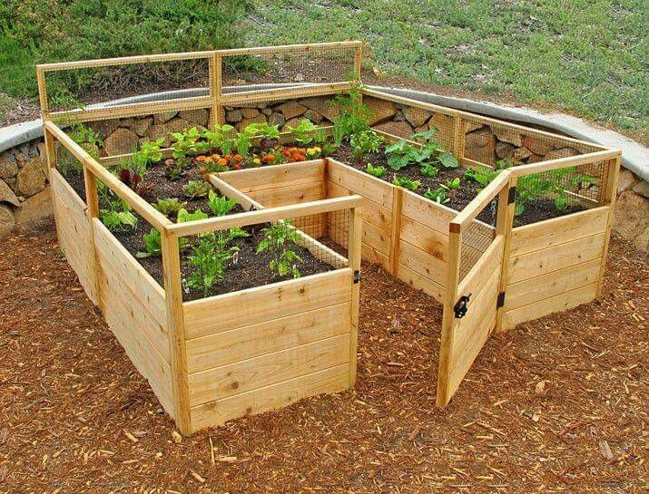 Enclosed raised garden