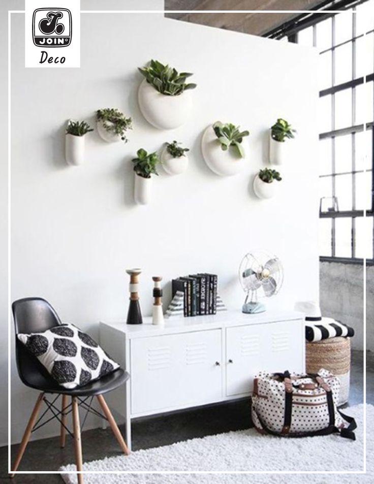 Decoration Ideas by JOIN ! Υπάρχει μια ολόκληρη σειρά φυτών εσωτερικού χώρου που λέγονται αερόφυτα (air plants) και ευδοκιμούν όπου κι αν τα βάλετε χωρίς καθόλου χώμα! Είναι η ιδανική λύση για χώρους όπως οι τοίχοι, στους οποίους δεν θα σκεφτόσασταν ποτέ να... κρεμάσετε φυτά! Και όμως το αποτέλεσμα είναι μοναδικό!