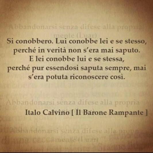 Si conobbero.#ItaloCalvino
