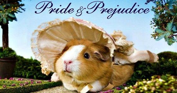Una nuova versione di Orgoglio e pregiudizio interpretata da un gruppo di adorabili porcellini d'India.