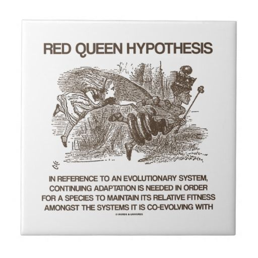 Red Queen Hypothesis Book - Opinion of professionals