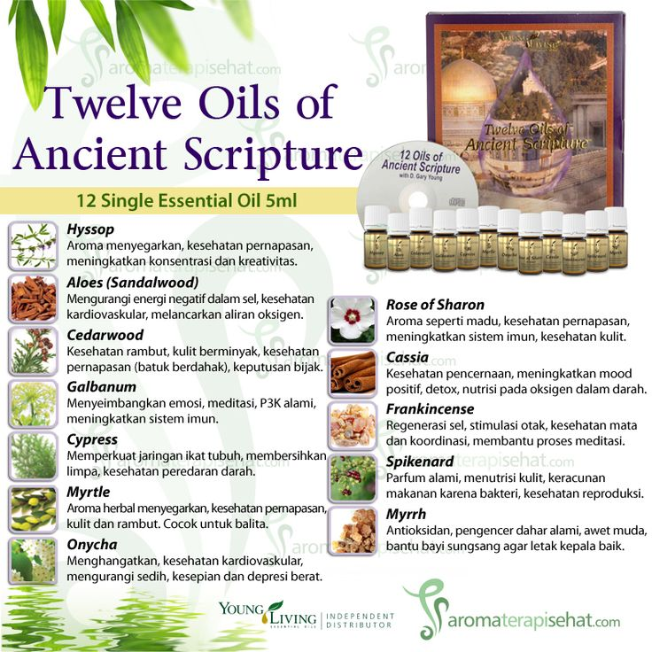 12 Oil of Ancient Scripture