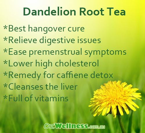What are the benefits of dandelion root