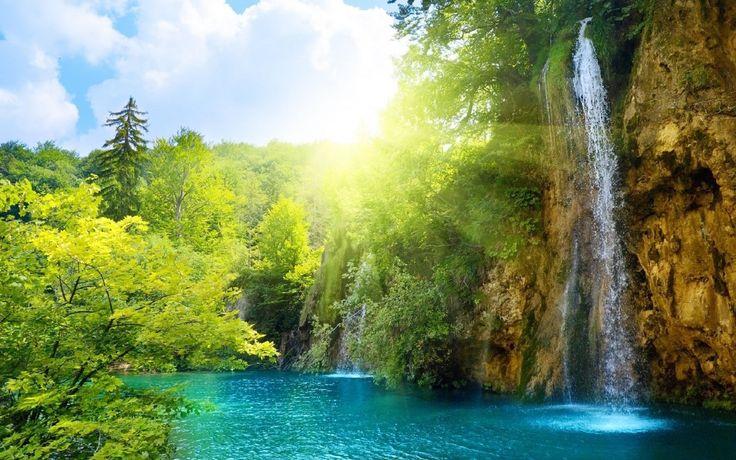 Yeşillik, Akarsu Ve Şelale Full HD Muhteşem Doğa Manzarası
