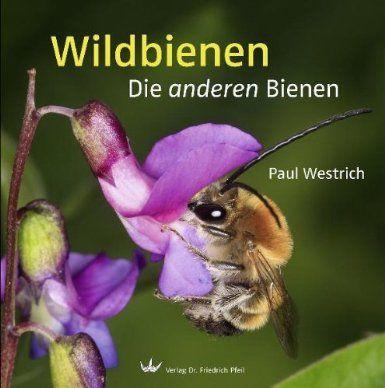 Great Wildbienen Die anderen Bienen Amazon de Paul Westrich B cher