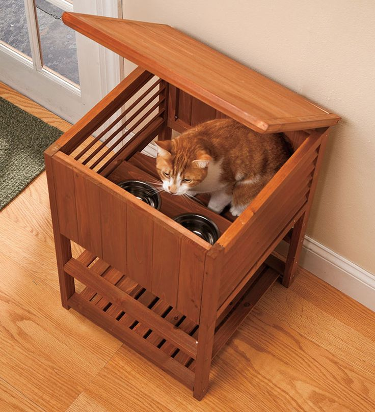 Cat Bowls To Stop Dogs From Eating From Them
