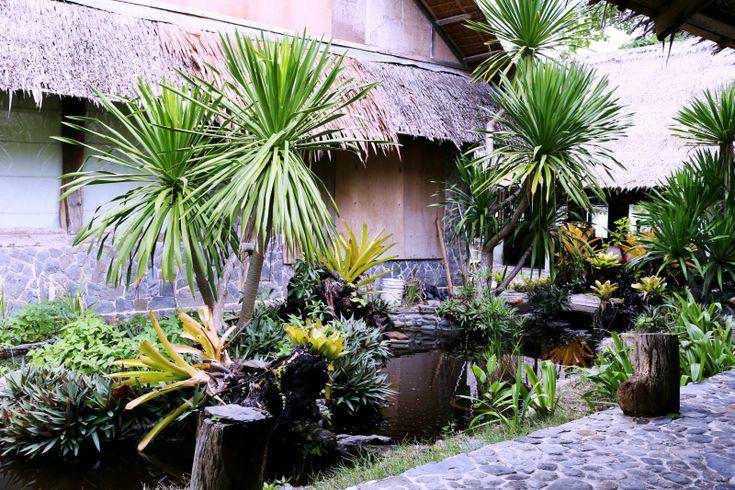 Jardín casa Tailandesa
