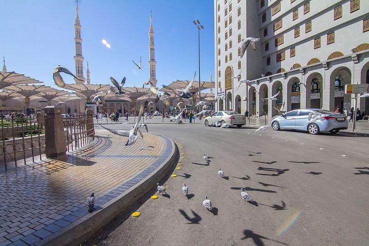 Beautiful of #Madinah #19