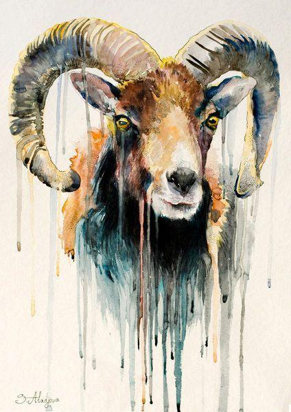 Original Watercolour Painting- Ram, goat, animal, illustration, animal watercolor, ovis aries, capra on Etsy, $350.00