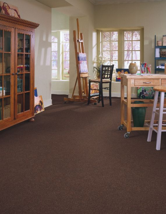 Multi purpose living carpeting in style new form color haystack by shaw floors