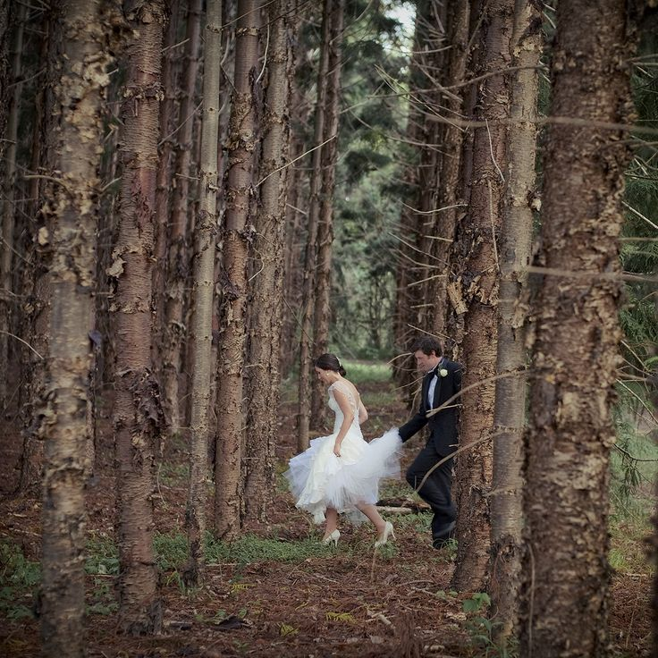 Tweed – photo: Tweed Tourism http://www.greatdestinationweddings.com.au/destination-wedding-tweed-coast/