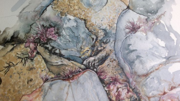 Rockpool on holiday in Cornwall, watercolour