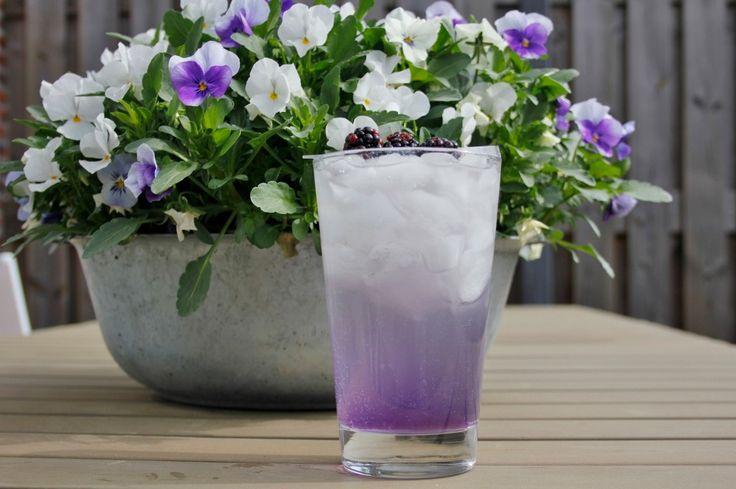 Deze Purple Rain is een mooie paarse cocktail die je maakt met parfait d'amour, vodka, ginger beer en limoen. Bekijk ons recept op Cocktailicious.nl